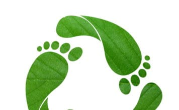 zöld lábnyom